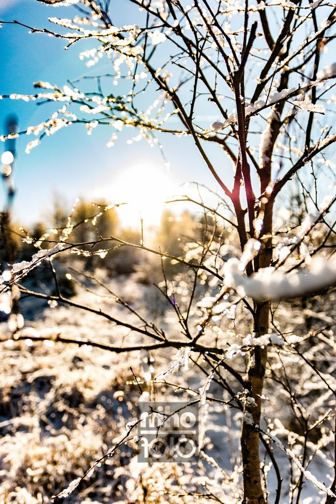 Endlich Winter | Winter at last
