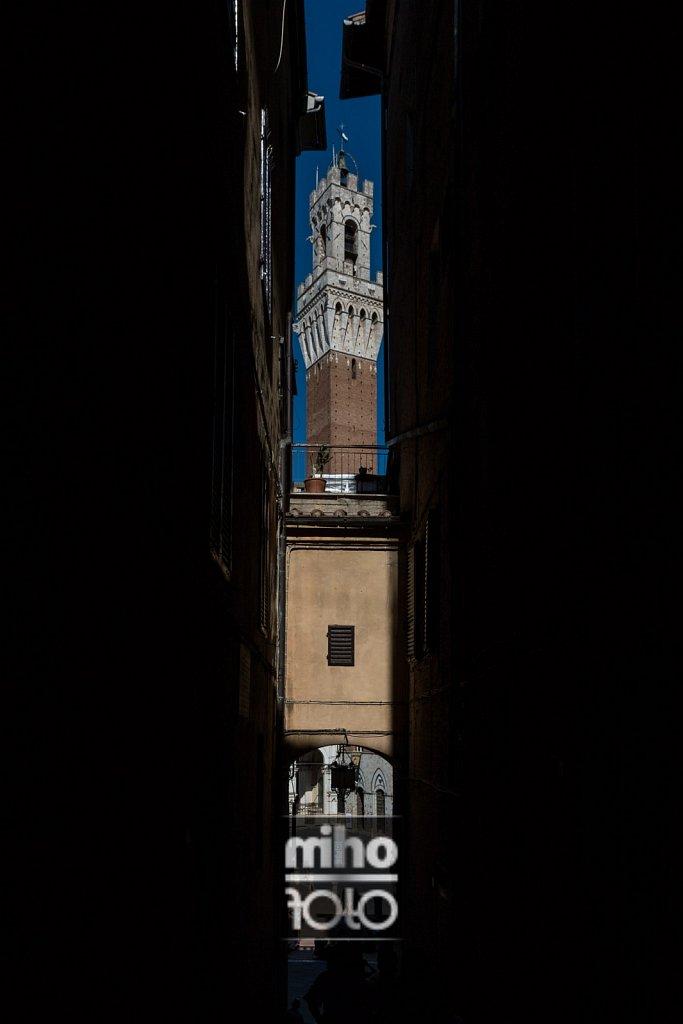 Siena IV
