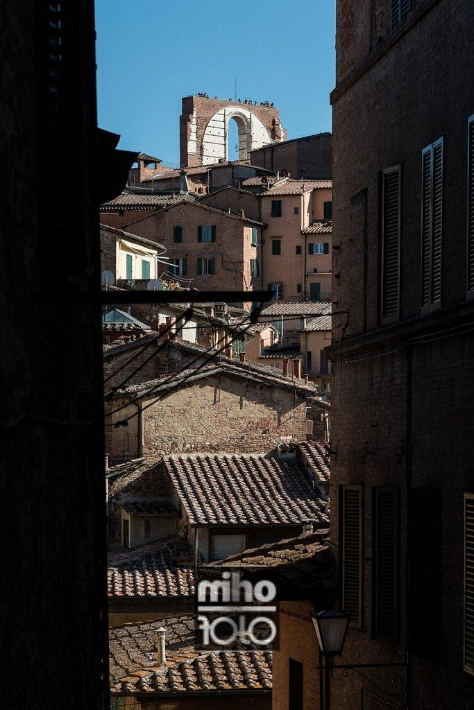 Siena VII