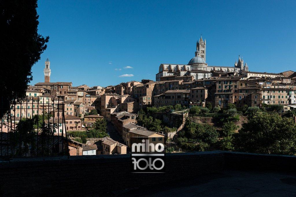 Siena VIII